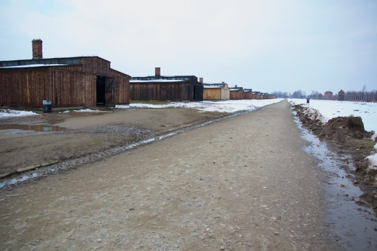 Barracons de fusta al camp de Birkenau