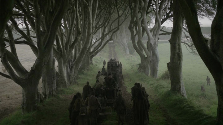 Localitzacions de Juego de Tronos:  Camino Real - The Dark Hedges County Antrim (© HBO)